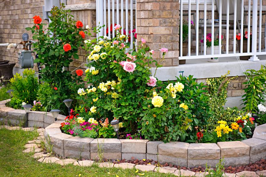 Garden Design Garden Design with LowMaintenance Plants for Easy