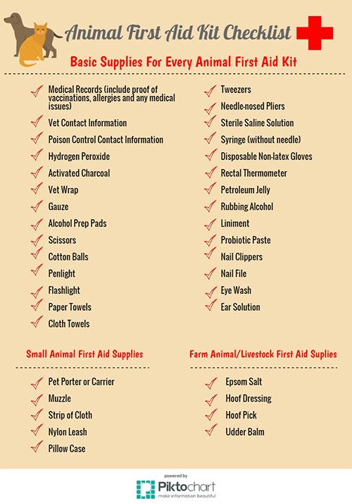 Kitchen First Aid Kit List