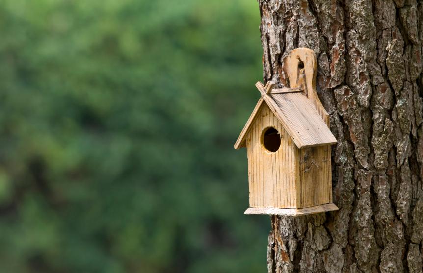 Admirable Bird Houses For Your Backyard Blains Farm Fleet Blog Download Free Architecture Designs Scobabritishbridgeorg