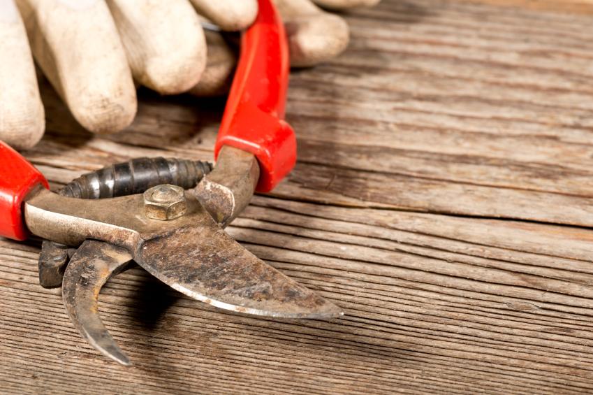 Garden Tools Sharpening Methods Blain 39 S Farm Fleet Blog