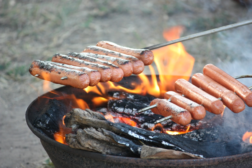 Campfire Hot Dog Recipes