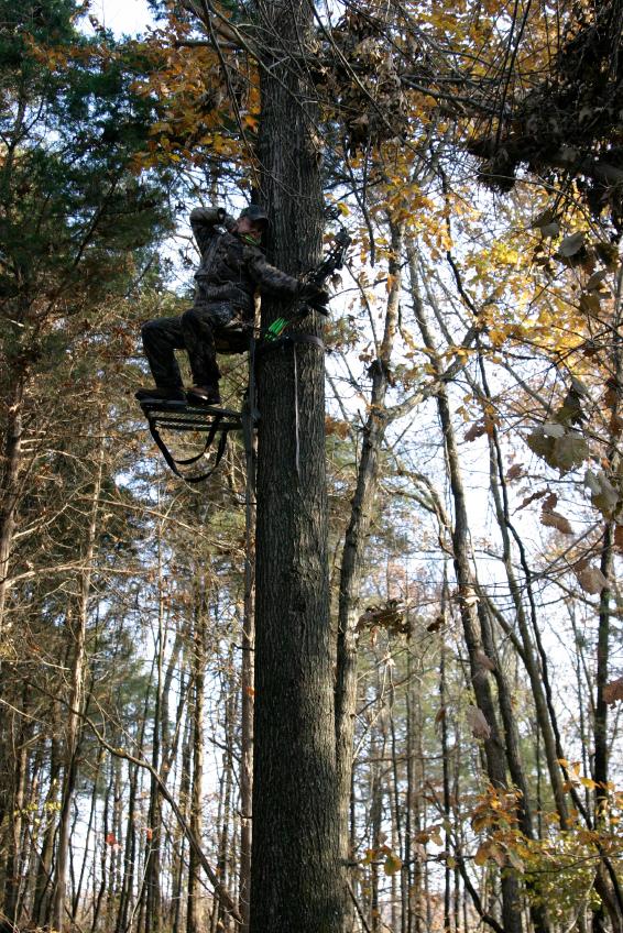 Hunting Tree Stand Placement Tips Blain S Farm Amp Fleet Blog