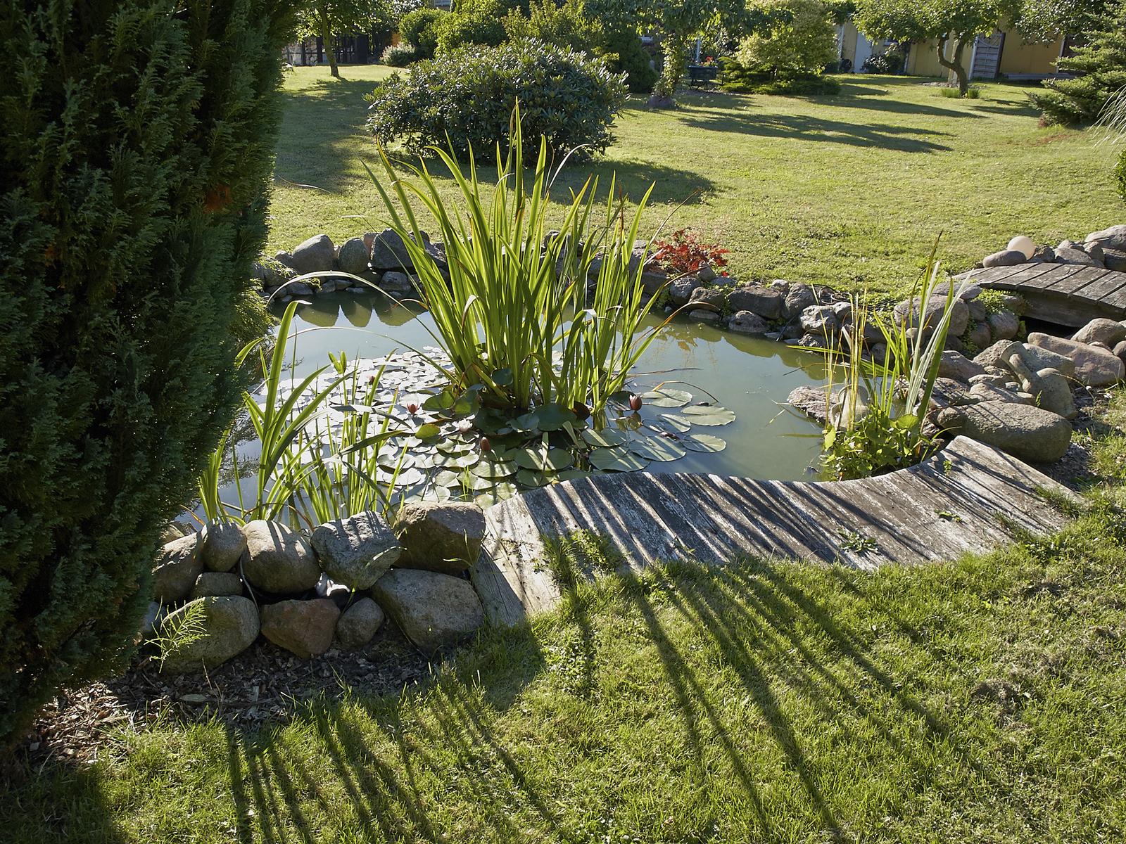 Backyard Pond Fountains water gardens & backyard ponds archives | blain's farm & fleet blog
