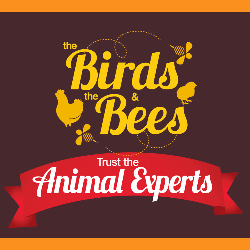 Chat With Bee Experts At Select Blain S Farm Fleet Stores