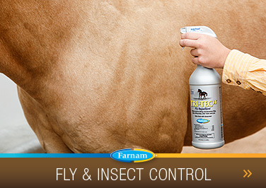 Fly & Insect Control