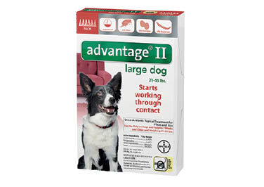 Advantage® II for Dogs