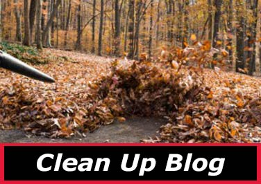 Clean Up Blog