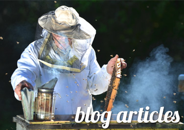 Beekeeping Articles