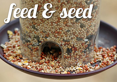 Shop Feed & Seed at Blain's Farm & Fleet!
