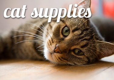Shop Cat & Kitten Supplies at Blain's Farm & Fleet!