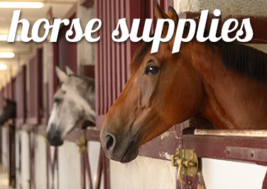 Shop Horse Supplies at Blain's Farm & Fleet!