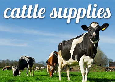 Shop Cattle Supplies at Blain's Farm & Fleet!