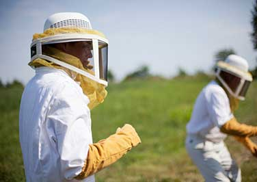 Protective Beekeeping Clothes