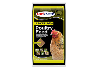Agrimaster Layer Poultry Feed
