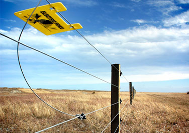 Electric Fence Introduction